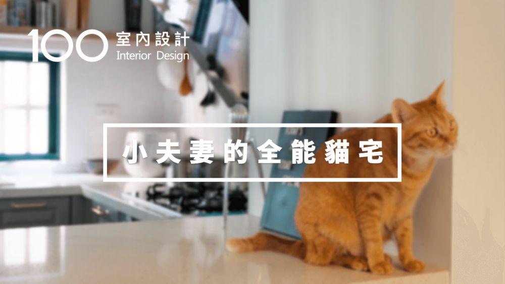【寵物宅】一屋、兩人、四隻貓,他們把日子過成自己想要的生活