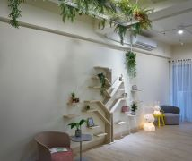 小樹之家 - 北歐風 - 10-20坪