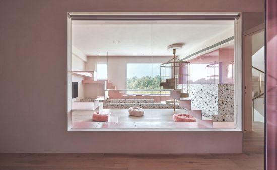 粉紅貓屋 Cat's Pink House - 現代風 - 51-80坪