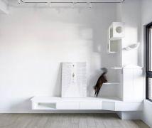 與貓的快意共棲 - 現代風 - 10-20坪