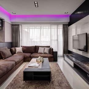 紫光魔力 現代風 新成屋