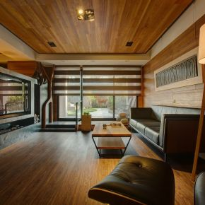 木藝術靜品宅 現代風 新成屋