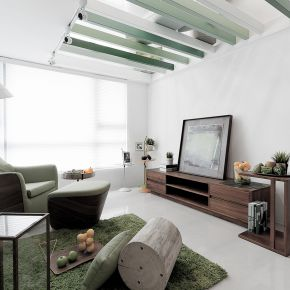 13坪會呼吸的都市樹屋 現代風 新成屋