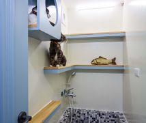 貓奴的輕法式夾層屋 - 古典風 - 10-20坪